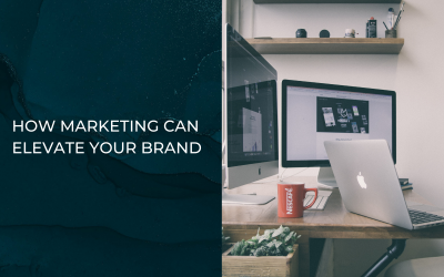 How Marketing Can Elevate Your Brand